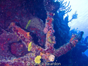 Anchor seen in Turks and Caicos while diving aboard the A... by Patrick Reardon 